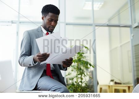 Elegant professional looking through financial papers in office
