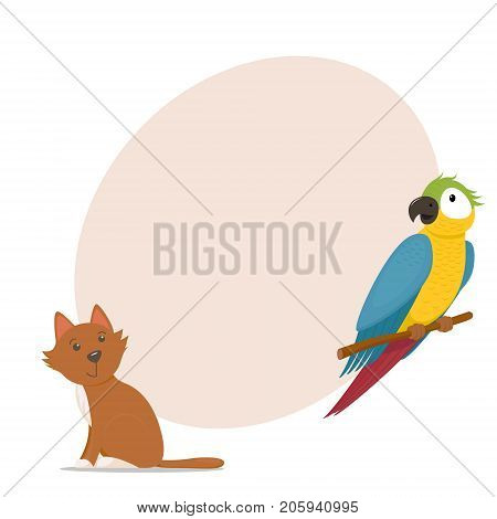Cute macaw, ara parrot, little red cat and place for text, cartoon vector illustration isolated on white background. Cartoon style macaw, ara parrot and pet cat, round place for text