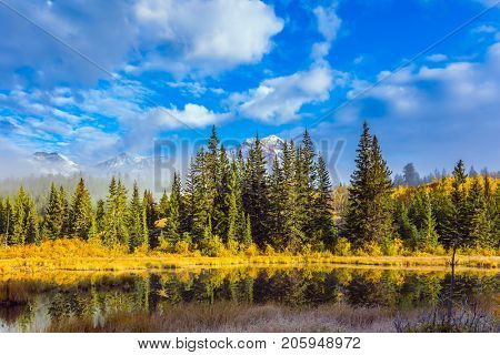 Patricia Lake among the firs and pines. The water reflects the snowy peak of the Pyramid Mountain. The concept of ecotourism