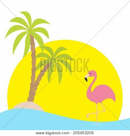 Pink flamingo standing on one leg. Two palms tree island ocean see water sunset. Exotic tropical bird. Zoo animal collection. Cute cartoon character. Flat design. White background Isolated. Vector
