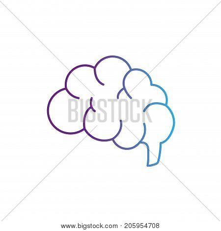 line side brain human anatomy organ of inteligence vector illustration