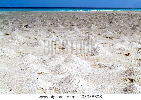 The Beach Of Ras Irisseyl On The Island Of Socotra