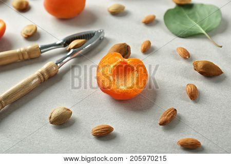 Nutcracker tool with apricot kernels on table