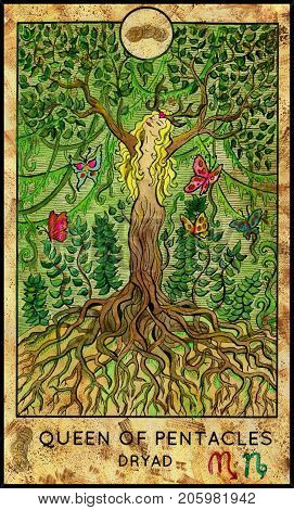 Dryad. Queen of pentacles. Fantasy Creatures Tarot full deck. Minor arcana. Hand drawn graphic illustration, engraved colorful painting with occult symbols