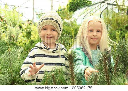Cute children at Christmas tree market