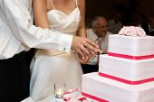 a bride and groom cutting a three layered pink wedding cake poster