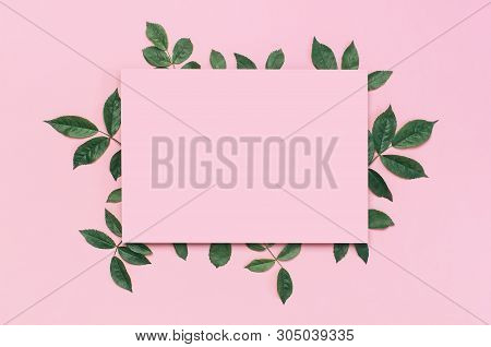Flowers Composition. Pink Blank Paper, Fresh Green Rose Leaves On Gentle Pink Background. Flat Lay,