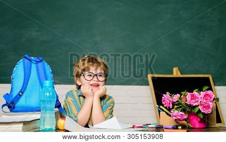 Back To School. Tired Boy In Glasses. Homework. Lessons. School Subjects. Science. Education Concept