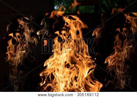 Wood Fire On Black Background.flames Of Fire On Black Background. Fire Rages In The Dark. Bonfire At