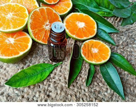 Mandarin Essential Oil Bottle, Tangerine Fruits, Citrus Aromatherapy Spa & Massage Essential Oil. Ta
