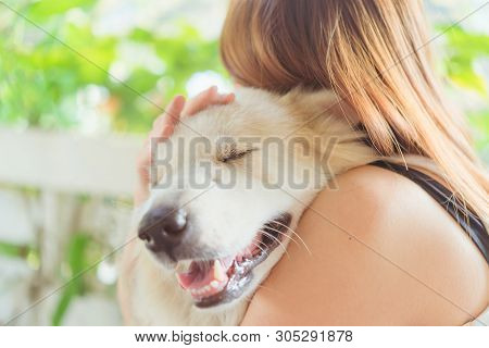 Woman Hugging Her Dog Friendly Pet Closeup Big Dog,happiness And Friendship. Pet And Woman.