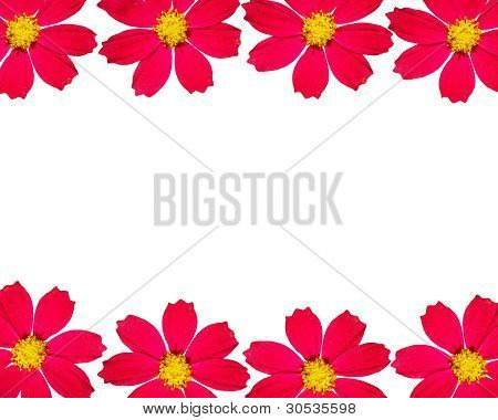 Flower Frame With Space For The Text.