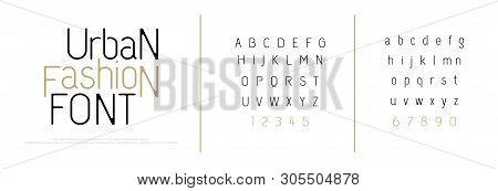 Elegant Alphabet Letters Font. Classic Custom Lettering Fashion Modern Designs. Typography Fonts Cla