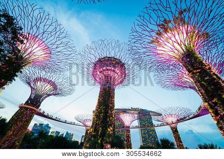 Singapore - April 13, 2019: Light Show Of Supertrees At Gardens By The Bay Near Marina Bay. The Tree