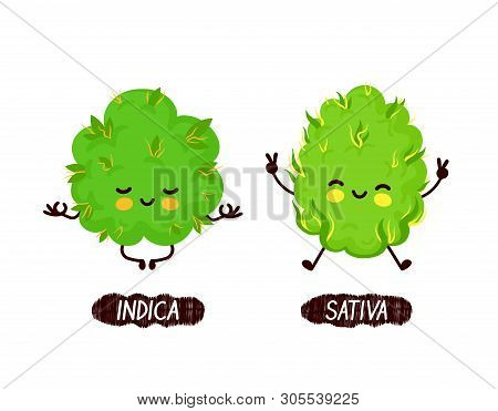 Happy Cute Smiling Indica And Sativa Weed Bud. Vector Flat Cartoon Character Illustration Icon Desig