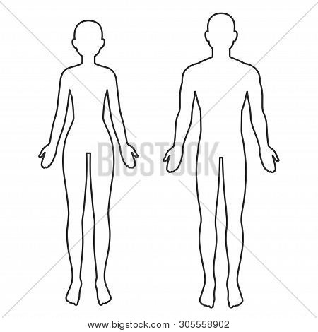 Male And Female Body Silhouette Outline. Blank Anatomy Template For Medical Infographics. Isolated V
