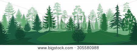 Forest Silhouettes. Wild Nature Wood Backgrounds, Green Pine Trees Firs And Spruces Landscape. Vecto