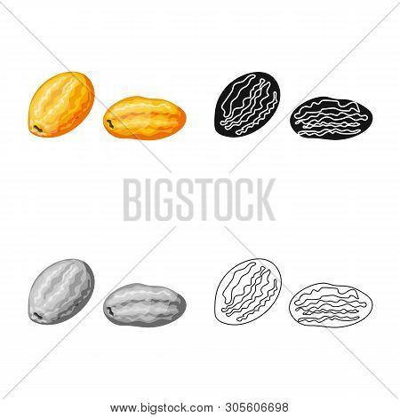 Vector Illustration Of Kumquat  And Citrus  Sign. Set Of Kumquat  And Crop Stock Vector Illustration