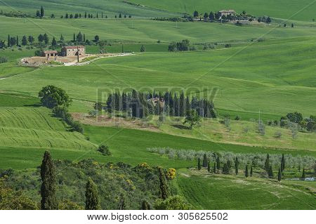 Idyllic View Of Rural Landscape In Tuscany, Italy