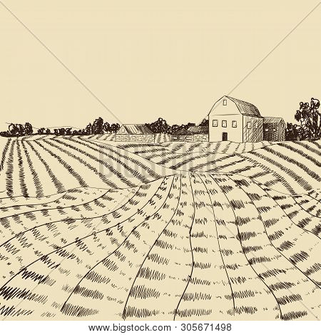 Vector Farm Landscape Etch, Agriculture Scene, Engraving Style Illustration, Hand Drawn Background,