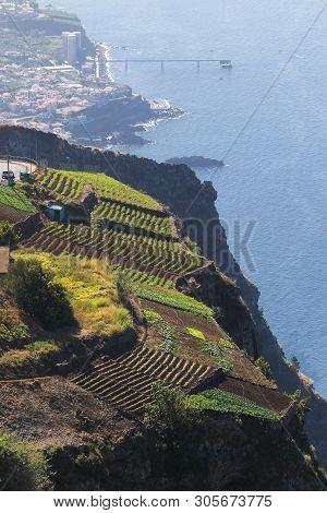 Cabo Girao Skywalk The Highest Cliff  In Europe, Madeira Island