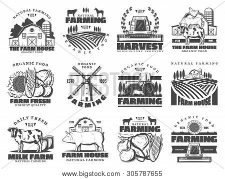 Farm Agriculture And Cattle Industry, Farming Food Production. Vector Icons Of Cattle Farm Cow And P