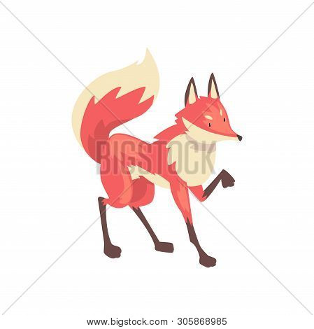 Cute Sneaking Red Fox Character Cartoon Vector Illustration