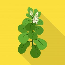 Isolated Object Of Leaves And Leaf Sign. Set Of Leaves And Botanical Stock Vector Illustration.