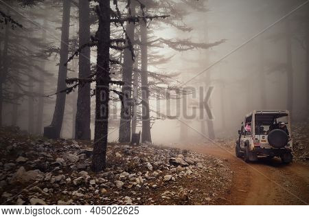 Blurry Image.tourist Safari 4x4 Vehicles Driving Through The Foggy Forest At Early Misty Morning Sun
