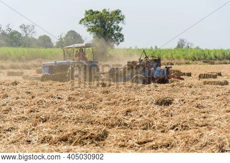 Sugarcane Leaf Compress By Tractor In Old Sugarcane Field