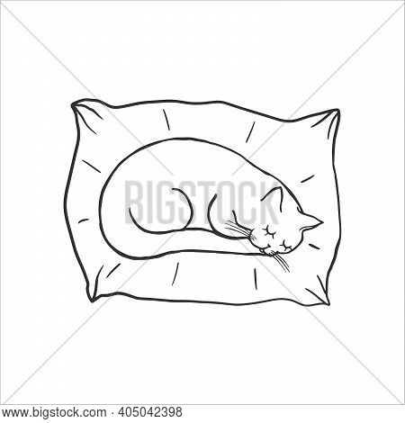 Cute Sleeping Cat On The Pillow. Baby Doodle. Coloring Pages. Cartoon Character Cat, Childish Outlin
