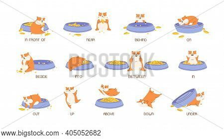 Educational Set Of Hamster And English Prepositions Of Place And Movement. Cute And Funny Animal Wit