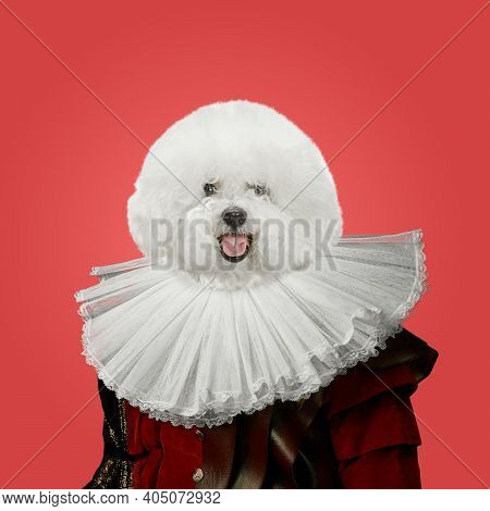 Snowflake. Model Like Medieval Royalty Person In Vintage Clothing Headed By Dog Head On Red Backgrou