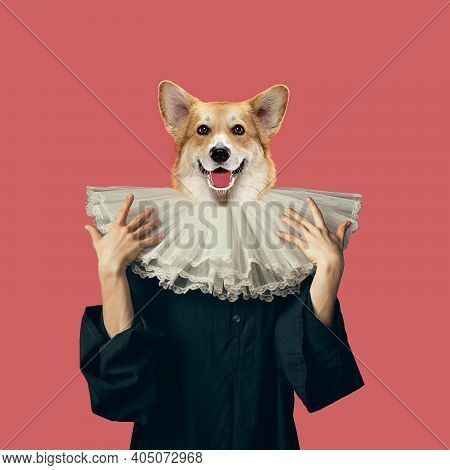 Jabot. Model Like Medieval Royalty Person In Vintage Clothing Headed By Dog Head On Red Background.