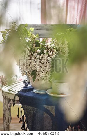 Acacia Flowers In White Vase. Still Life Wit Acacia Flowers On Vintage Chair.