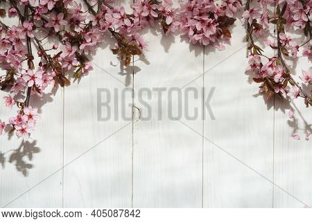 Flowers Composition. Cherry Blossom Flowers On White Wood Background. Flat Lay, Top View, Copy Space