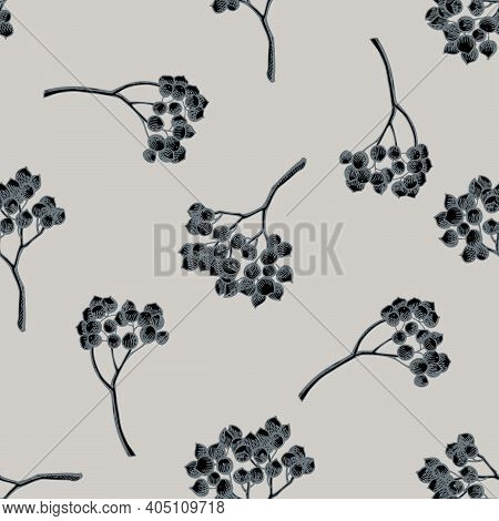 Seamless Pattern With Hand Drawn Stylized Rosemary Everlasting Stock Illustration