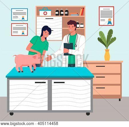 Piglet At Reception Of Veterinarian. Owner Of Pet Holding Pig On Veterinary Table Veterinarian Exami