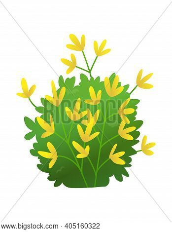 Grass Or Bushes. Green Realistic Spring Grass With Yellow Flowers. Fresh Plants, Garden Botanical Gr