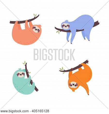 Set Of Cute Hand Drawn Sloths Hanging On The Tree. Lazy Animal Characters. Jungle Animal Collection.