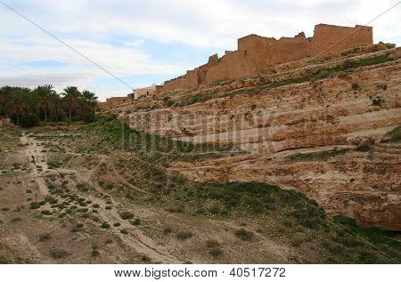 Mides Oasis, Tunisia