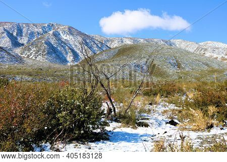 Snow Surrounded By Chaparral Plants On The High Desert Plateau With The Rugged San Gabriel Mountains