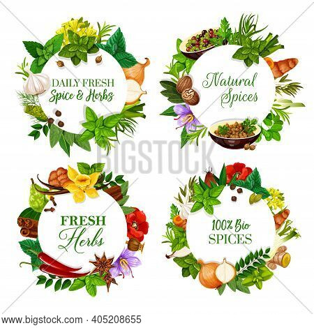 Natural And Aromatic Kitchen Herbs Round Banners. Peppermint, Mustard And Rosemary, Onion, Garlic An
