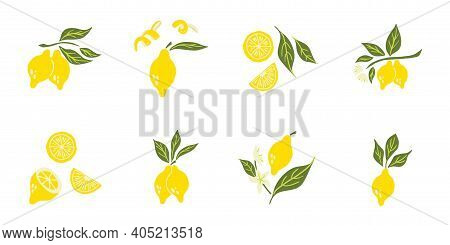 Lemon Set. Exotic Tropical Yellow Citrus Fresh Fruit Composition, Juicy Lemons With Green Leaves And