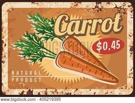 Carrot Metal Plate Rust, Vegetable Farm Price Sign, Vector Retro Poster. Organic Farm Food Market Me
