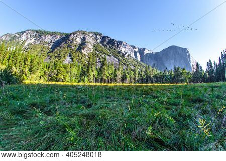 Western Cordillera. Yosemite Valley. The famous rock-monolith El Capitan. Yosemite Park is located on the slopes of the Sierra Nevada. The park is declared a World Heritage Site