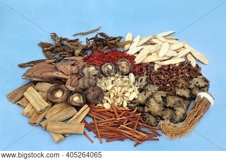 Chinese herbs and spice selection used in traditional herbal medicine on mottled blue background. Natural Asian health care concept.