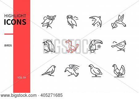 Bird Species - Line Design Style Icons Set