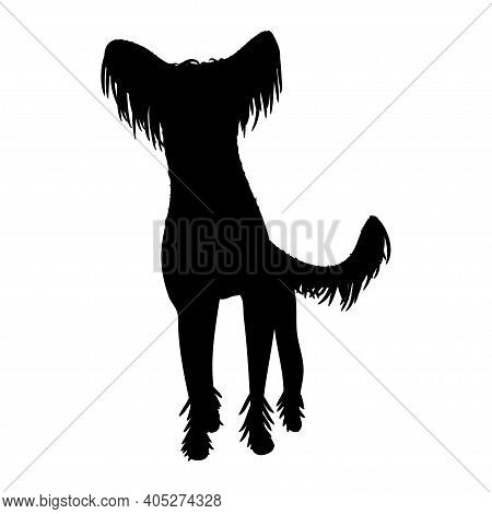Chinese-crested Dog On White Background. Silhouette. Vector.