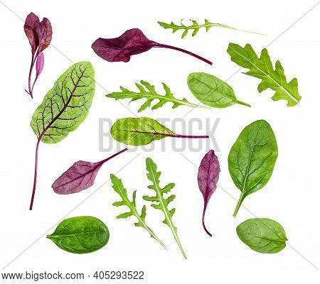 Fresh Leaves Of Various Leafy Vegetables (chard, Spinach, Arugula) Isolated On White Background
